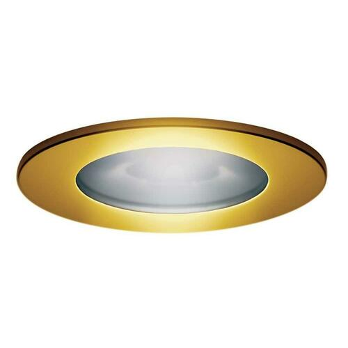 Steamist TSTR-BN ShowerSense Trim Ring in Brushed Nickel for ChromaSense Light